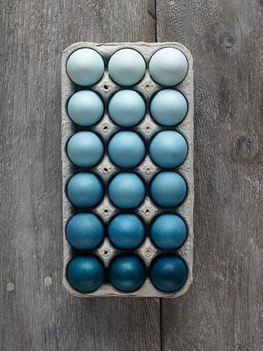 SPRINGIFY YOUR HOME: 10 easy DIY decor ideas | blog.zoombook.com