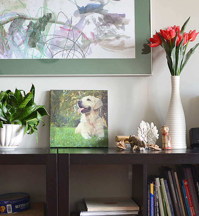 Home is Where You Hang Canvas Prints: 8 Ideas | Your pets | blog.zoombook.com