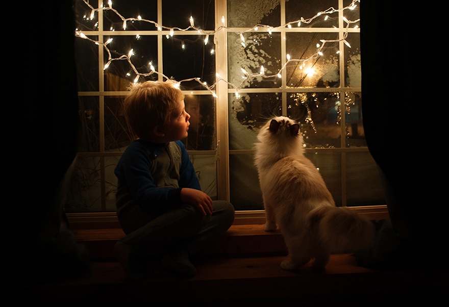 boy-cat-beth-mancuso-photography-10