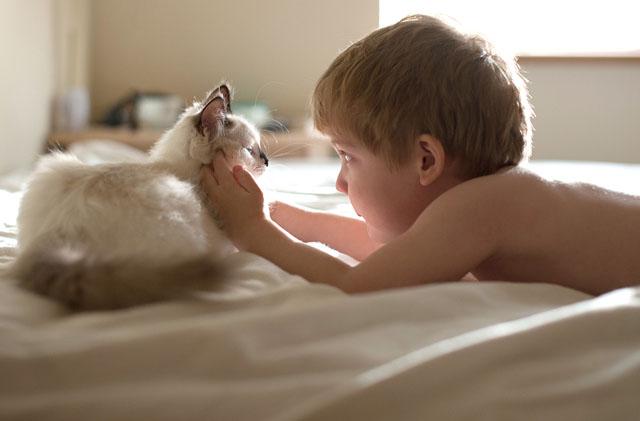 boy-cat-beth-mancuso-photography-11