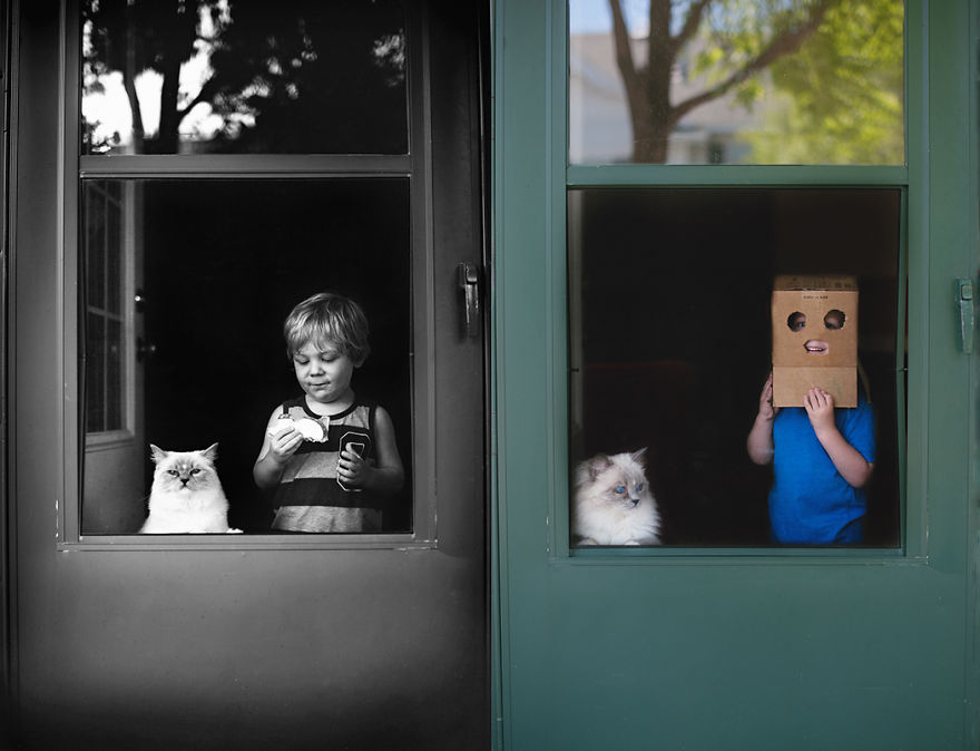 boy-cat-beth-mancuso-photography-3
