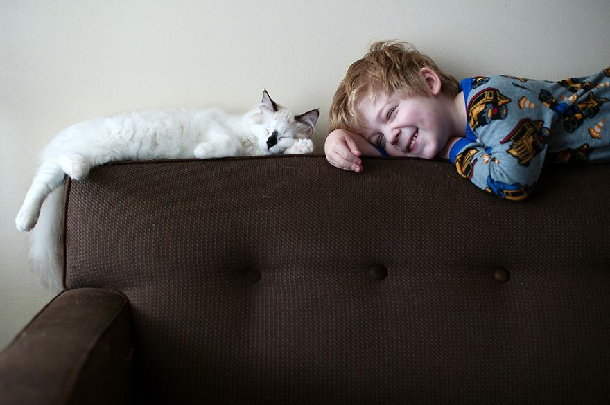 boy-cat-beth-mancuso-photography-4